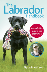 Books About Dogs For People Who Love Them Pippa Mattinson